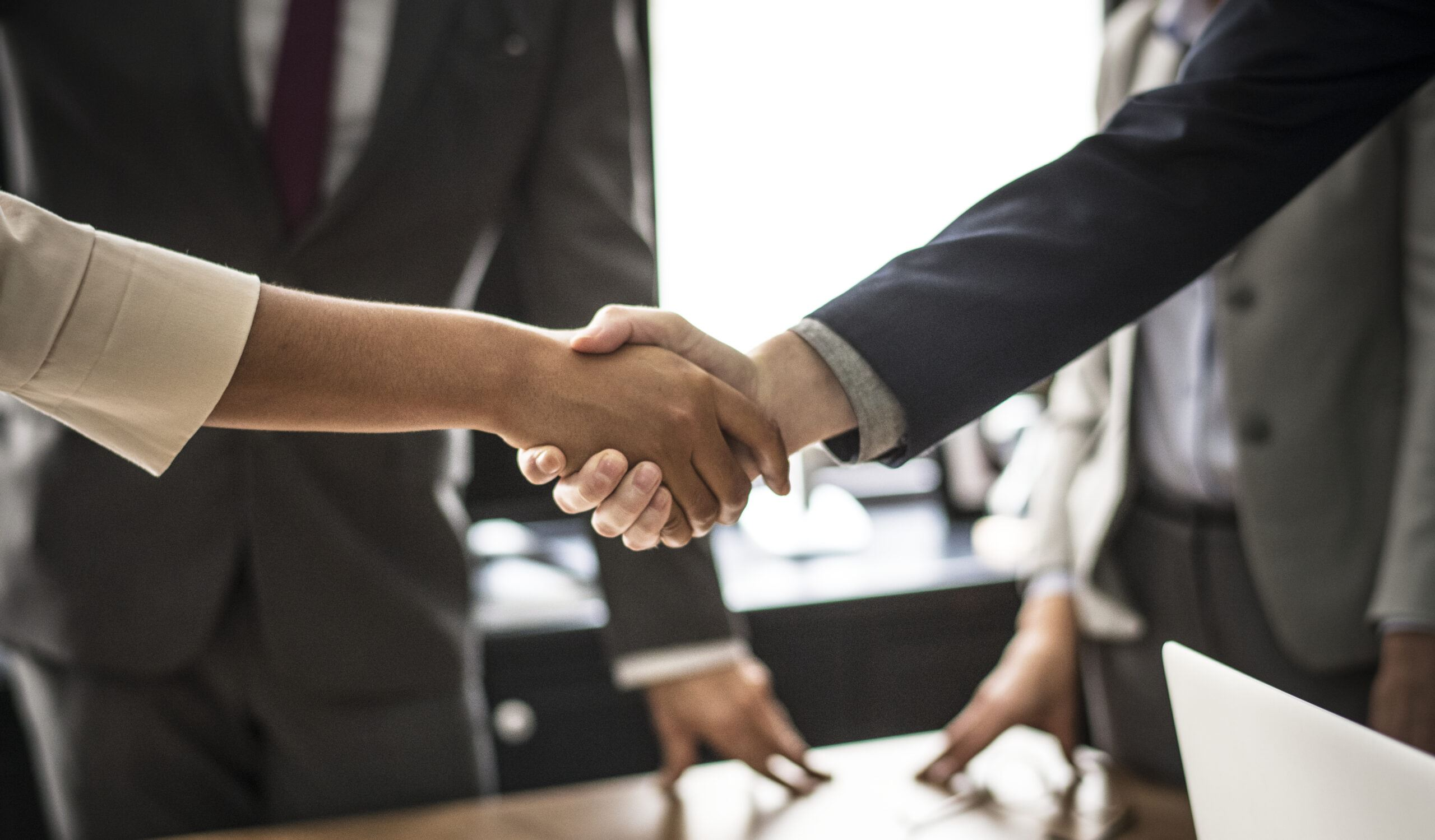 professional services - people in suits shaking hands